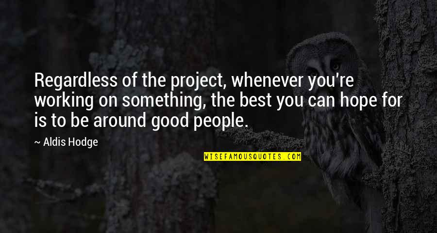 Hope The Best For You Quotes By Aldis Hodge: Regardless of the project, whenever you're working on