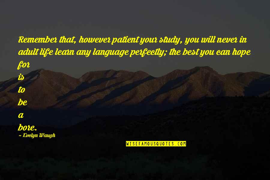 Hope The Best For You Quotes By Evelyn Waugh: Remember that, however patient your study, you will