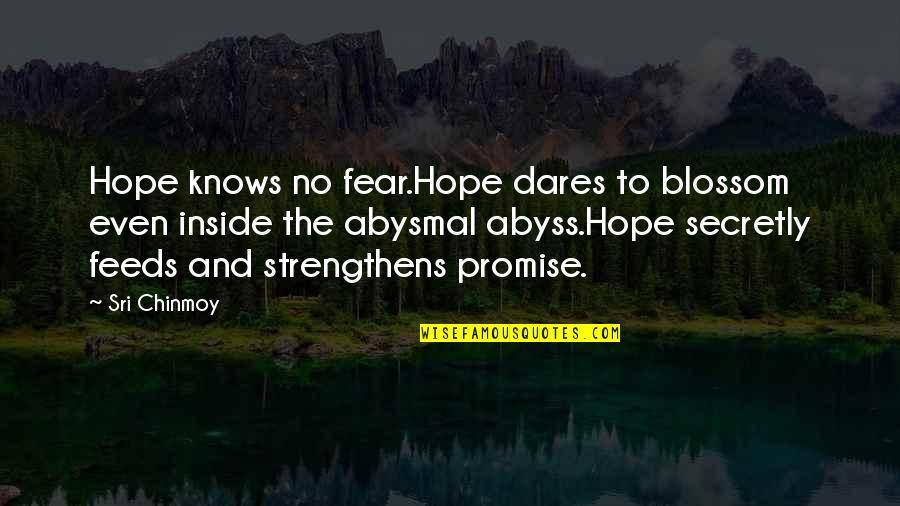 Hope To Quotes By Sri Chinmoy: Hope knows no fear.Hope dares to blossom even
