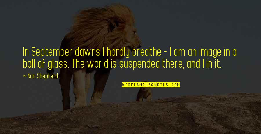 Hope Today Is A Good Day Quotes By Nan Shepherd: In September dawns I hardly breathe - I