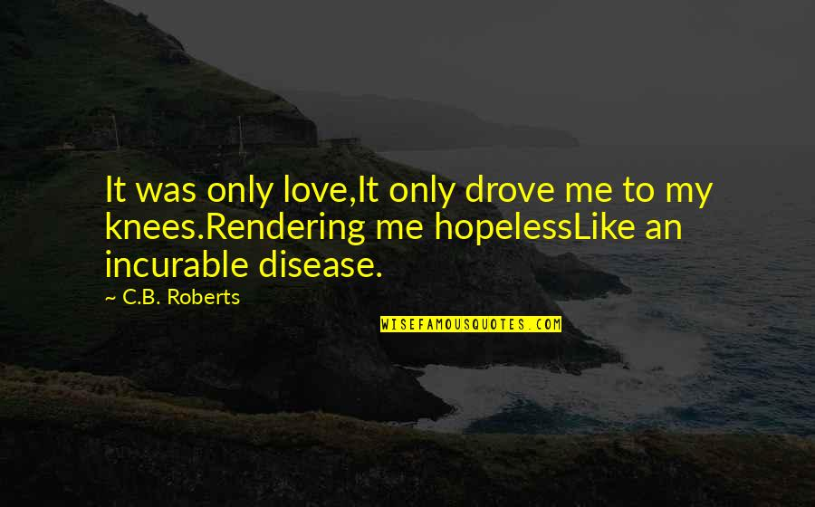 Hopeless Love Quotes By C.B. Roberts: It was only love,It only drove me to