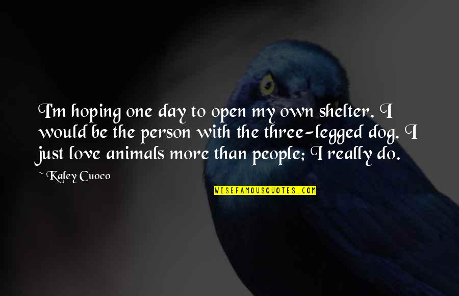 Hoping For Love Quotes By Kaley Cuoco: I'm hoping one day to open my own