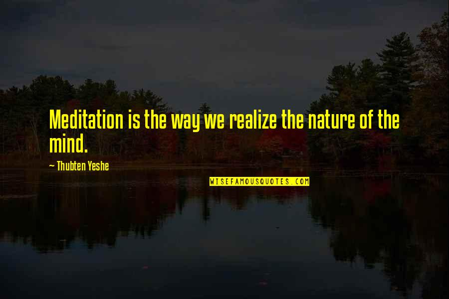 Hoppy Quotes By Thubten Yeshe: Meditation is the way we realize the nature