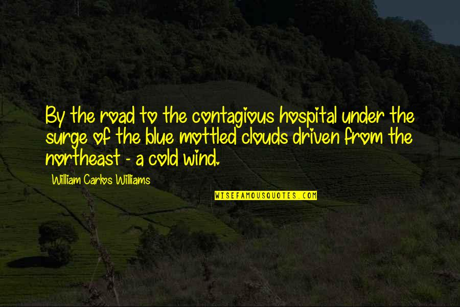 Hospital Quotes By William Carlos Williams: By the road to the contagious hospital under