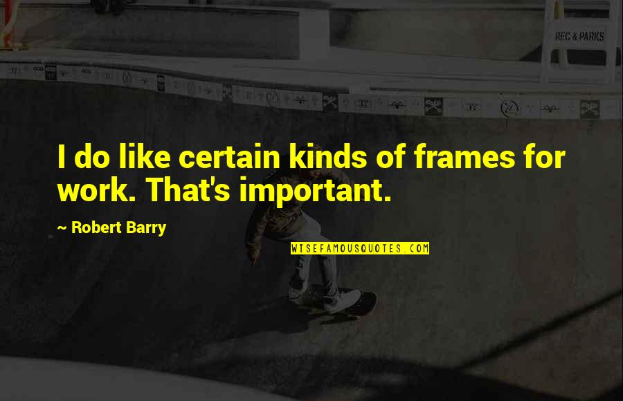 Hot Cakes Quotes By Robert Barry: I do like certain kinds of frames for