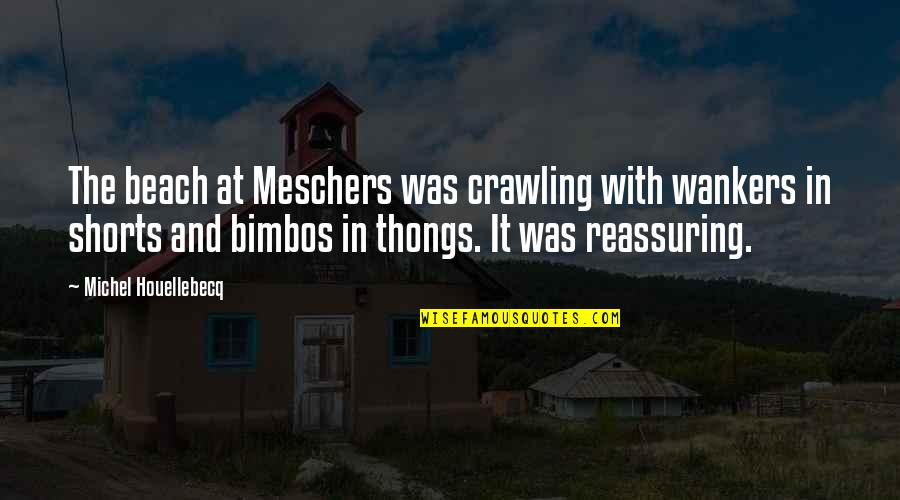 Houellebecq Quotes By Michel Houellebecq: The beach at Meschers was crawling with wankers