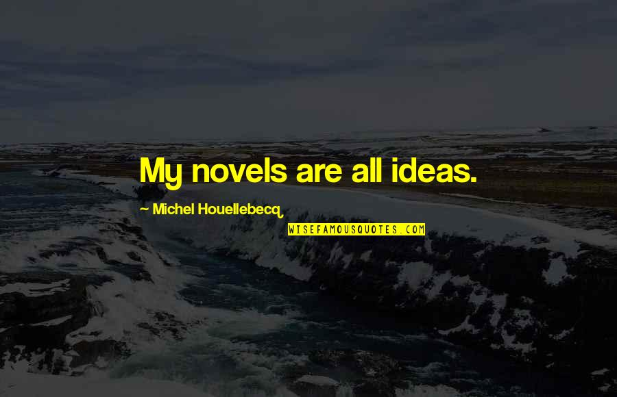 Houellebecq Quotes By Michel Houellebecq: My novels are all ideas.