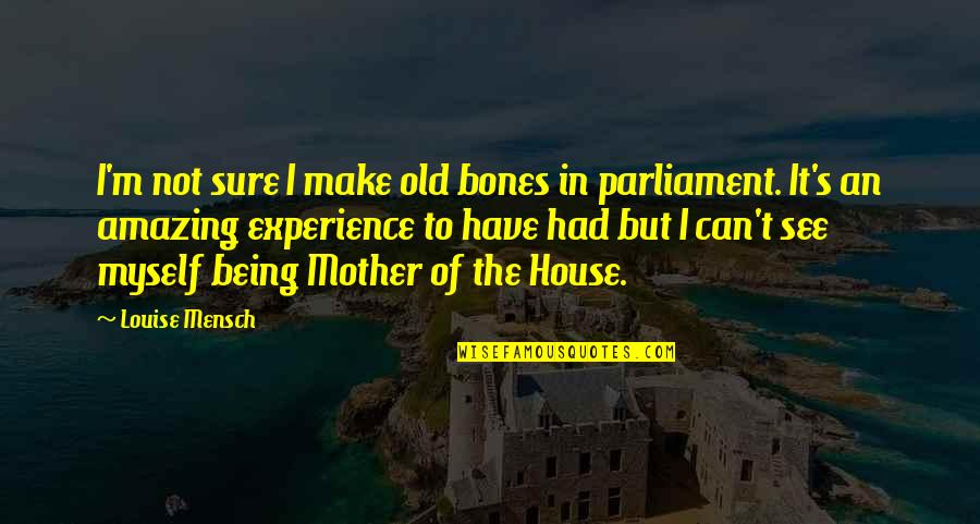 House Mother Quotes By Louise Mensch: I'm not sure I make old bones in
