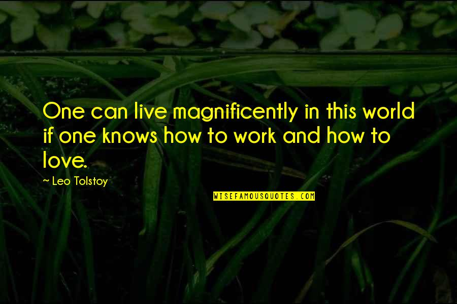 How I Live Now Love Quotes By Leo Tolstoy: One can live magnificently in this world if