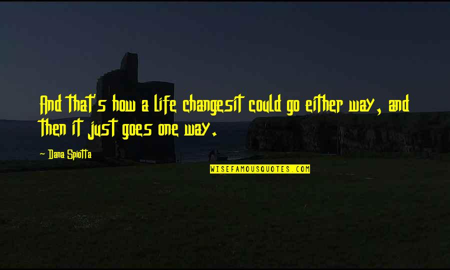 How Life Goes Quotes By Dana Spiotta: And that's how a life changesit could go