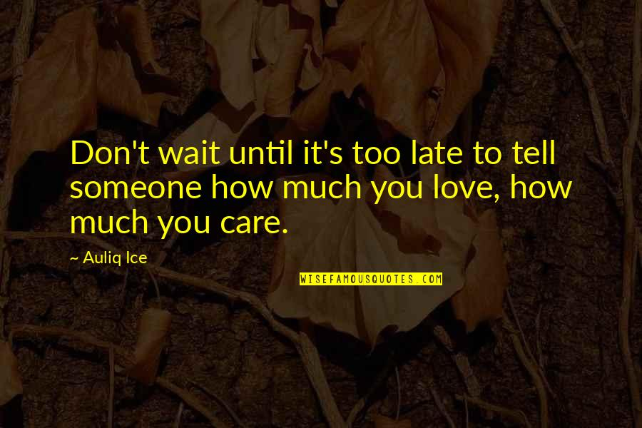 How Much You Care For Someone Quotes By Auliq Ice: Don't wait until it's too late to tell