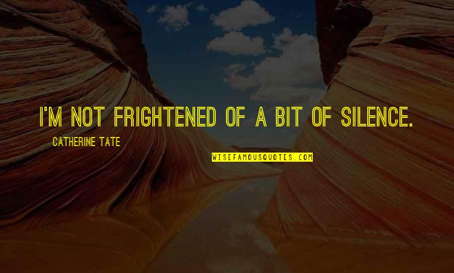 How To Live Happy Life Quotes By Catherine Tate: I'm not frightened of a bit of silence.