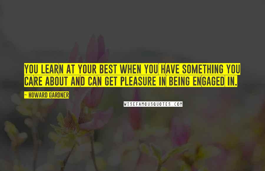 Howard Gardner quotes: You learn at your best when you have something you care about and can get pleasure in being engaged in.