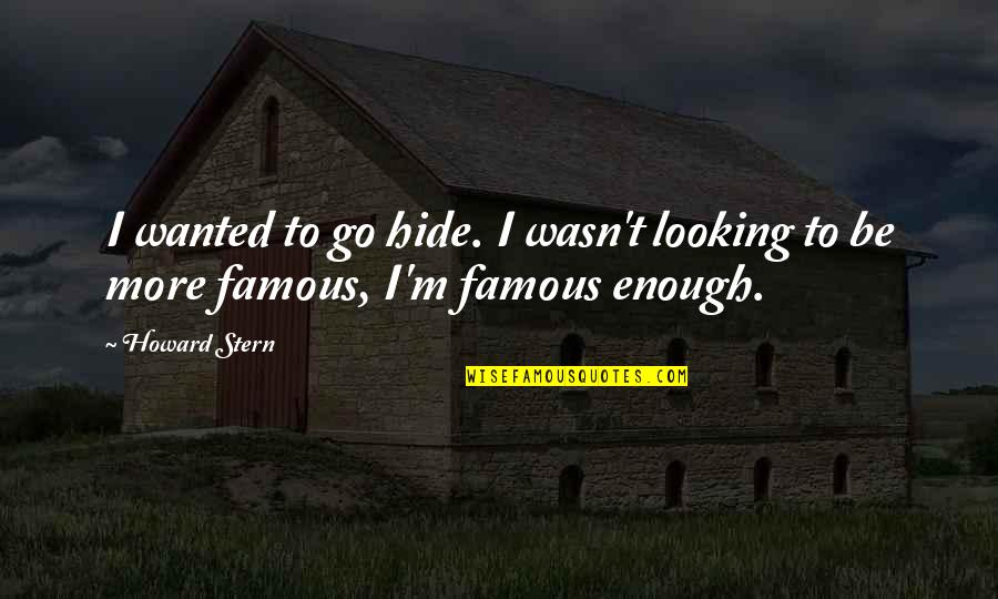 Howard Stern Quotes By Howard Stern: I wanted to go hide. I wasn't looking