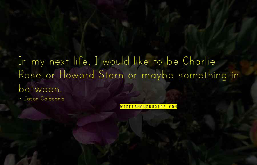 Howard Stern Quotes By Jason Calacanis: In my next life, I would like to