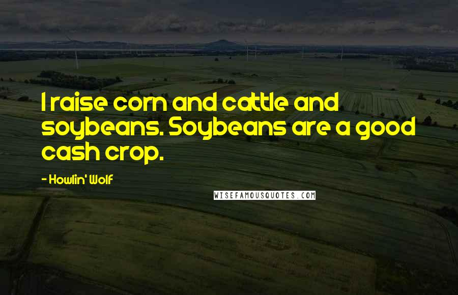 Howlin' Wolf quotes: I raise corn and cattle and soybeans. Soybeans are a good cash crop.