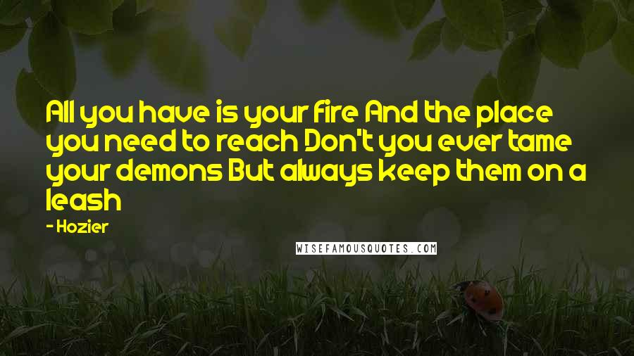 Hozier quotes: All you have is your fire And the place you need to reach Don't you ever tame your demons But always keep them on a leash