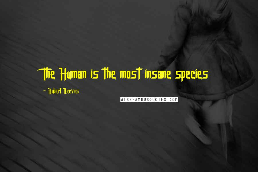 Hubert Reeves quotes: The Human is the most insane species