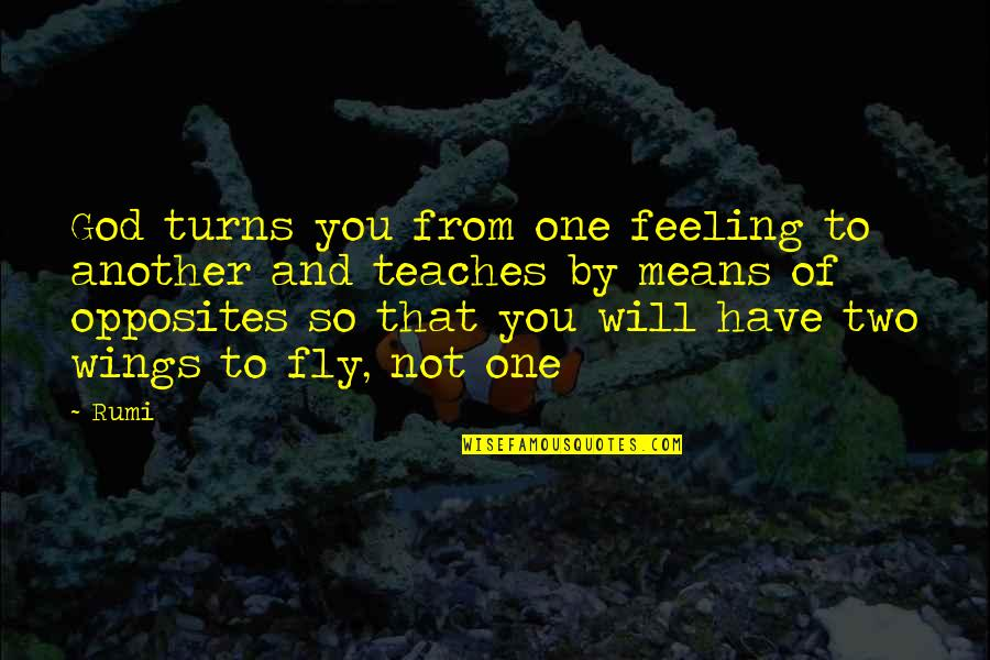Hullah Quotes By Rumi: God turns you from one feeling to another