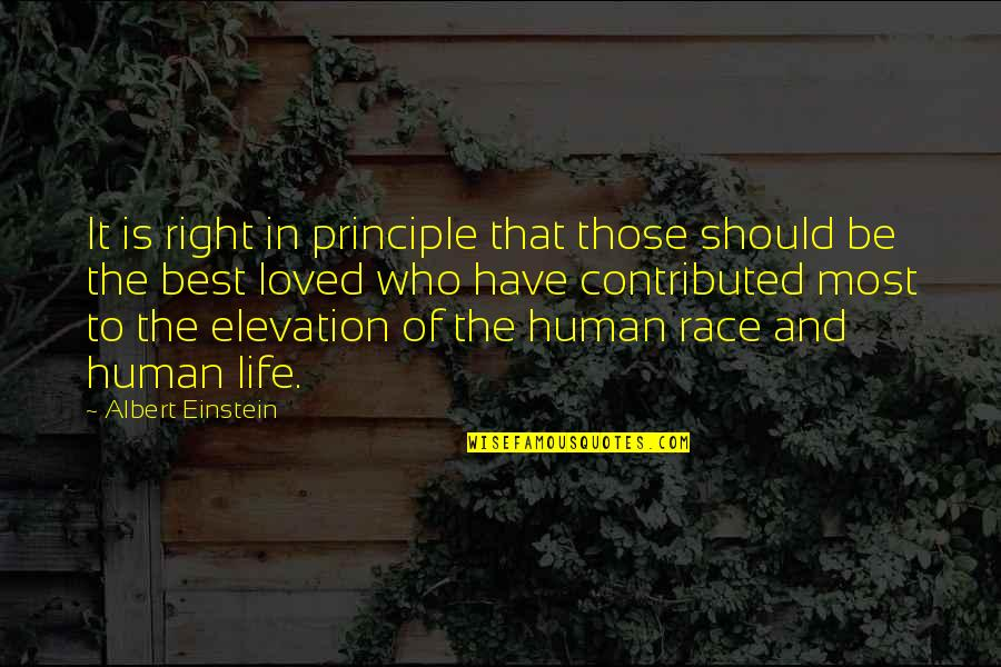 Human Right Quotes By Albert Einstein: It is right in principle that those should