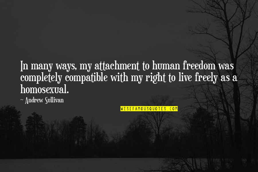 Human Right Quotes By Andrew Sullivan: In many ways, my attachment to human freedom