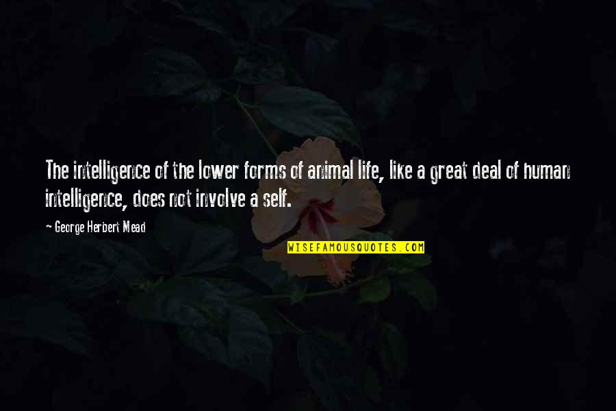 Human Vs Animal Quotes By George Herbert Mead: The intelligence of the lower forms of animal