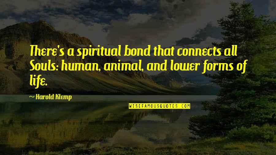 Human Vs Animal Quotes By Harold Klemp: There's a spiritual bond that connects all Souls: