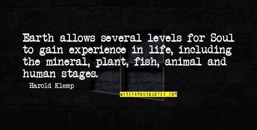 Human Vs Animal Quotes By Harold Klemp: Earth allows several levels for Soul to gain