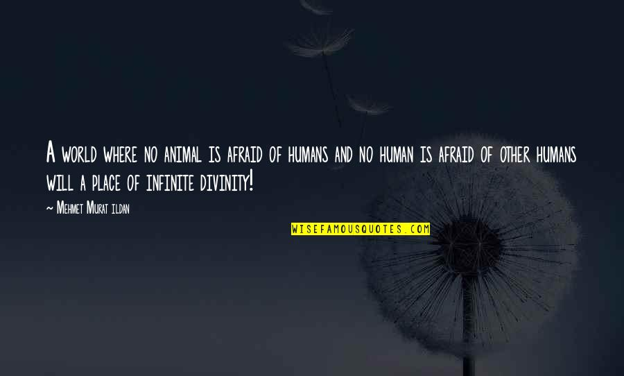 Human Vs Animal Quotes By Mehmet Murat Ildan: A world where no animal is afraid of