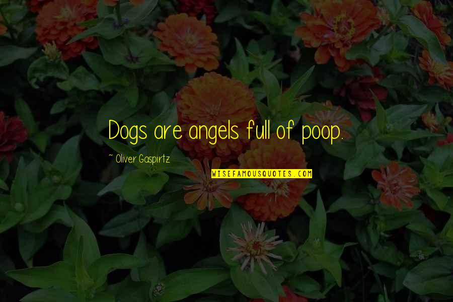 Humans And Pets Quotes By Oliver Gaspirtz: Dogs are angels full of poop.