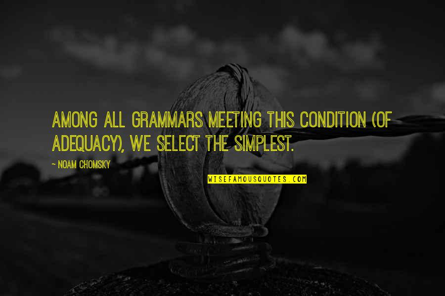 Humorous Laundry Quotes By Noam Chomsky: Among all grammars meeting this condition (of adequacy),