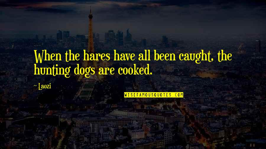 Hunting Dog Quotes By Laozi: When the hares have all been caught, the