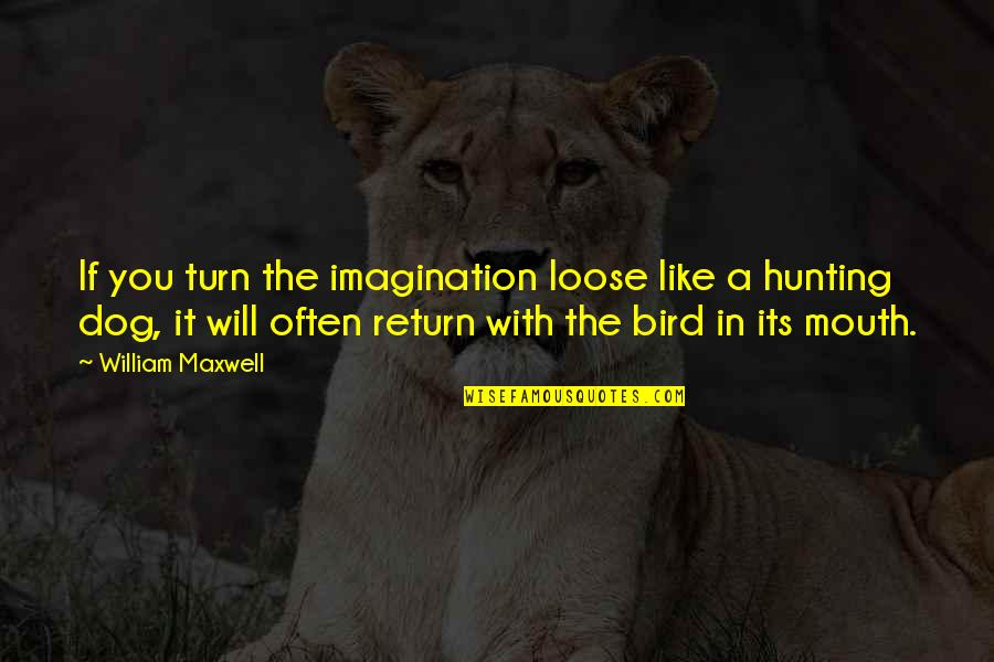 Hunting Dog Quotes By William Maxwell: If you turn the imagination loose like a