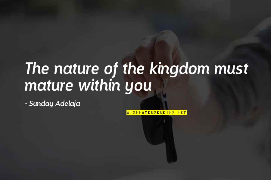 Hurt Feelings Of Love Quotes By Sunday Adelaja: The nature of the kingdom must mature within