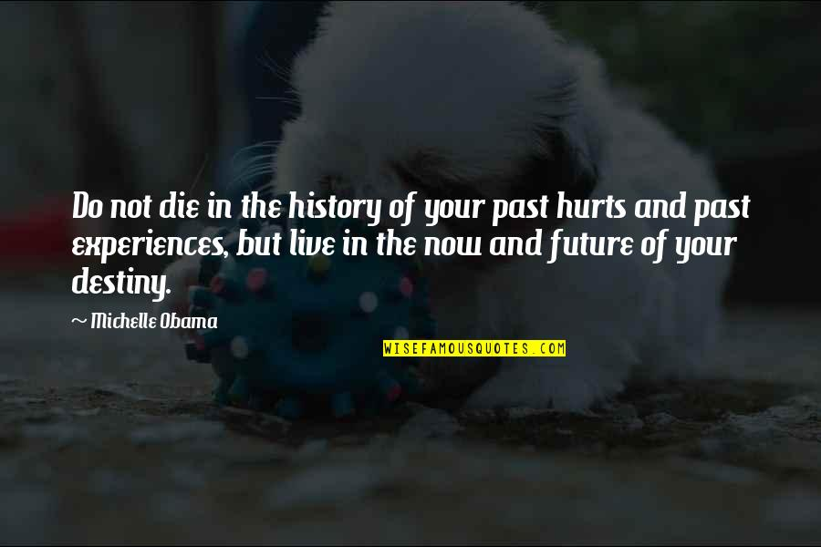 Hurt From The Past Quotes By Michelle Obama: Do not die in the history of your