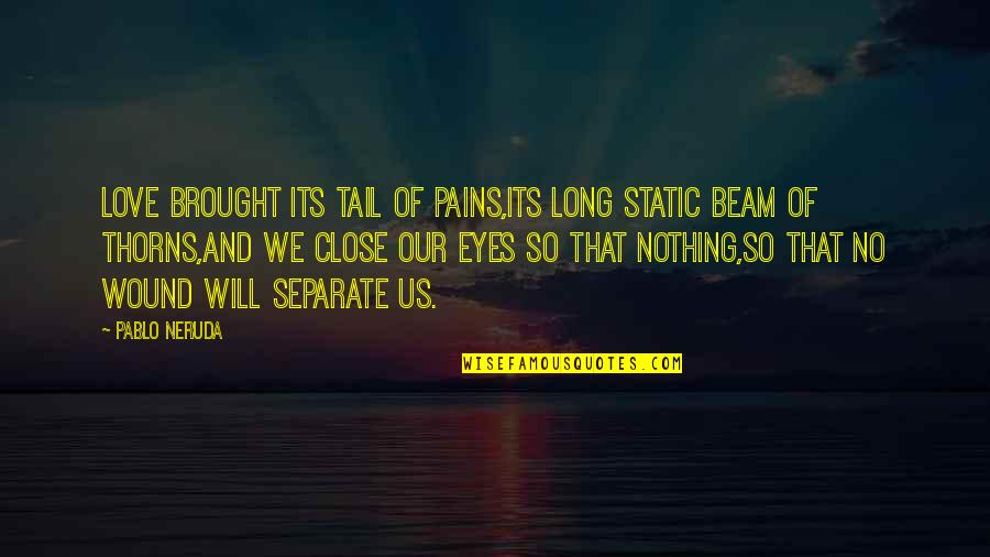 Hurts Heart Quotes By Pablo Neruda: Love brought its tail of pains,its long static