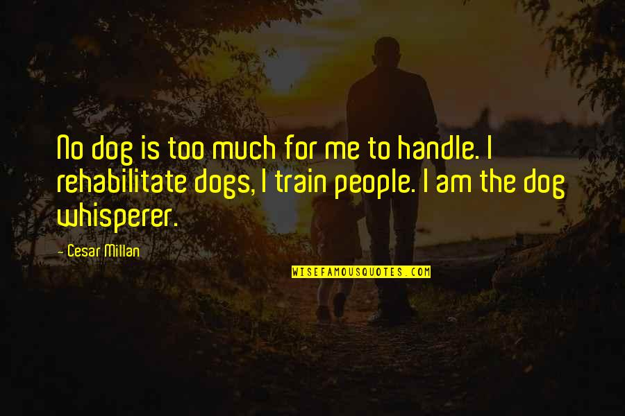 Hyperion Loader Quotes By Cesar Millan: No dog is too much for me to