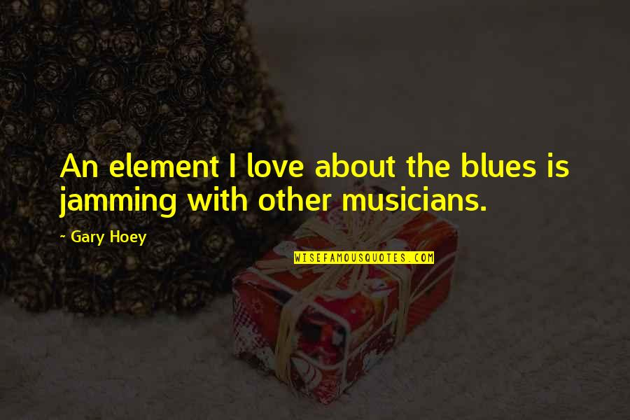 Hyperventilated Quotes By Gary Hoey: An element I love about the blues is