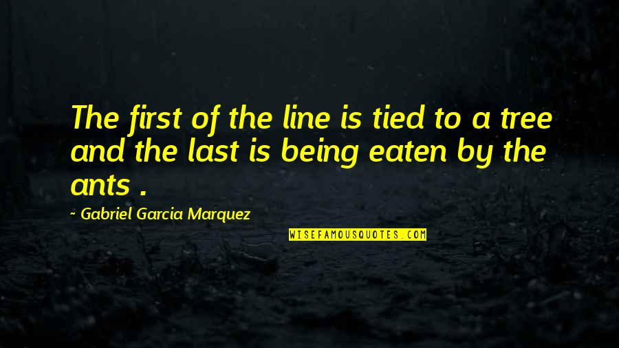 I Act Like A Kid Quotes By Gabriel Garcia Marquez: The first of the line is tied to