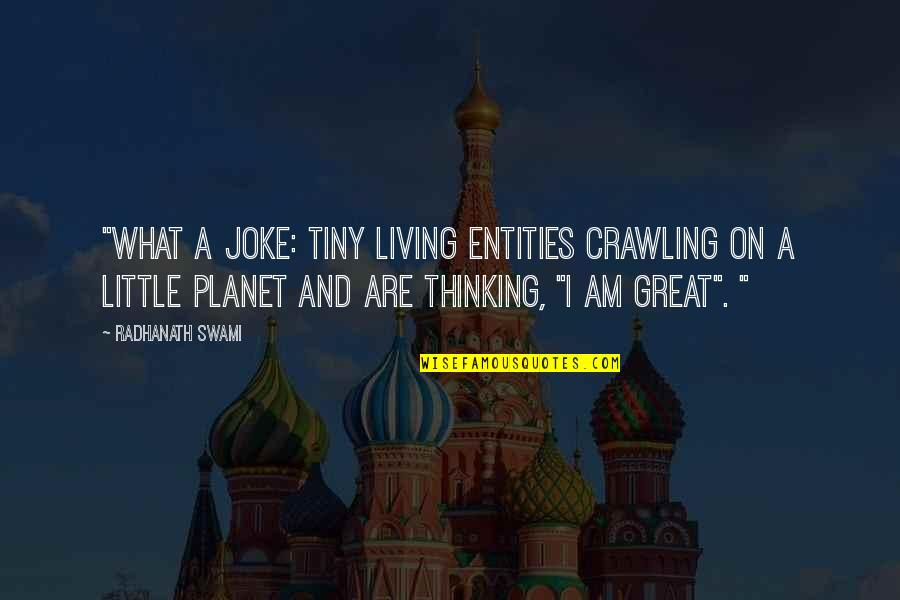 """I Am A Joke Quotes By Radhanath Swami: """"What a joke: Tiny living entities crawling on"""