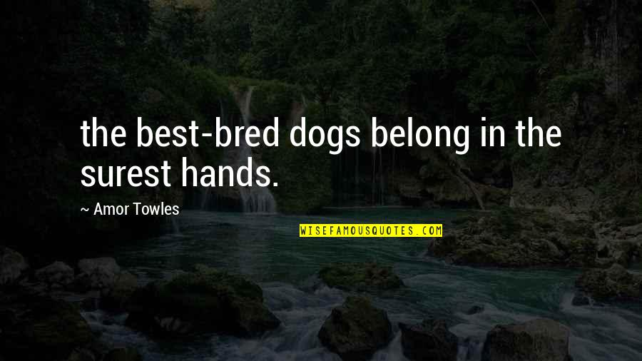 I Am Belong To You Quotes By Amor Towles: the best-bred dogs belong in the surest hands.