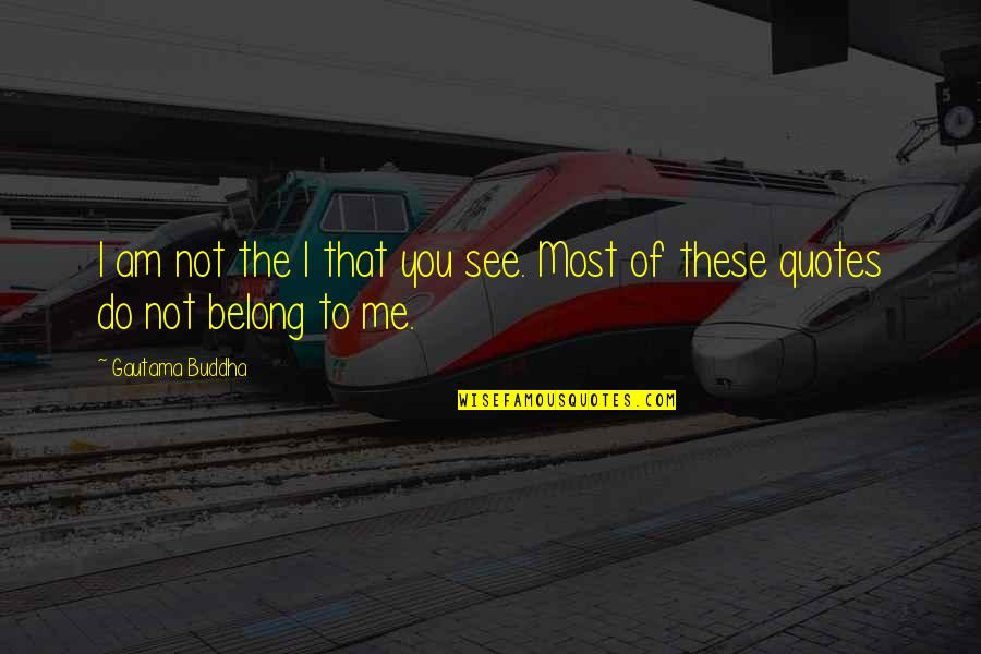 I Am Belong To You Quotes By Gautama Buddha: I am not the I that you see.
