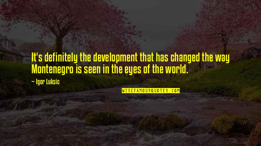 I Am Changed For You Quotes By Igor Luksic: It's definitely the development that has changed the