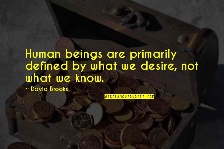 I Am Defined By Quotes By David Brooks: Human beings are primarily defined by what we