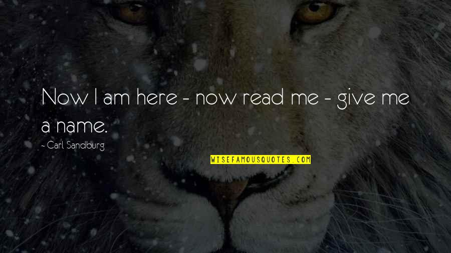 I Am Here Now Quotes By Carl Sandburg: Now I am here - now read me