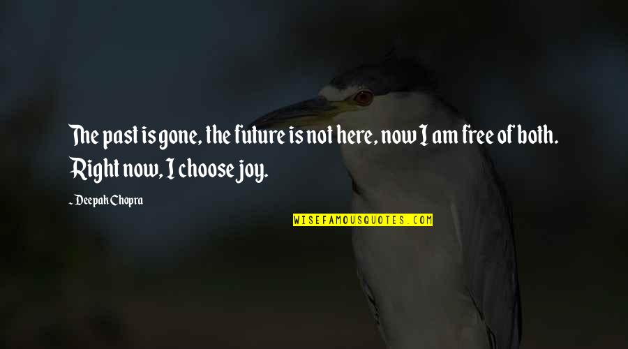I Am Here Now Quotes By Deepak Chopra: The past is gone, the future is not