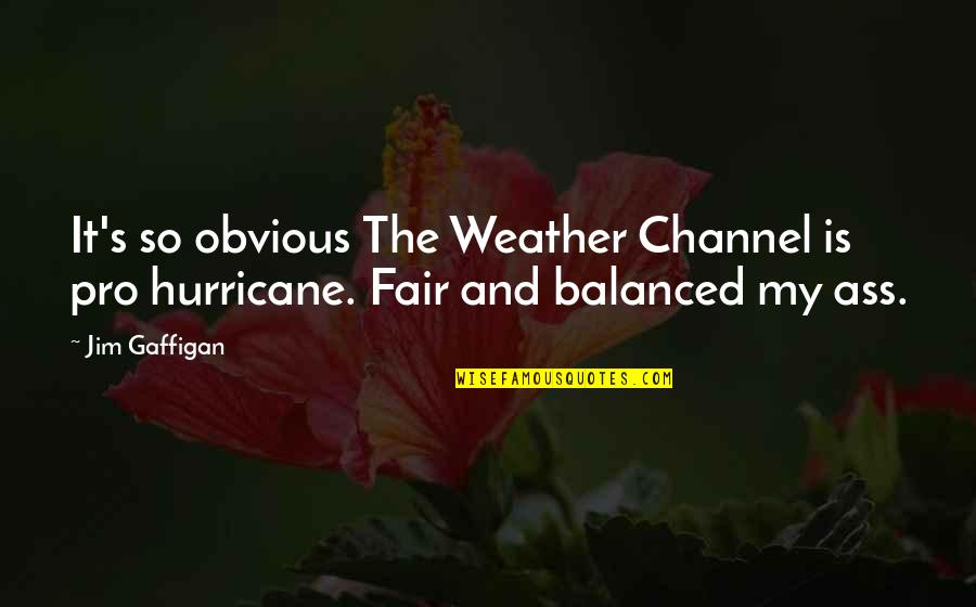 I Am Not Fair Quotes By Jim Gaffigan: It's so obvious The Weather Channel is pro