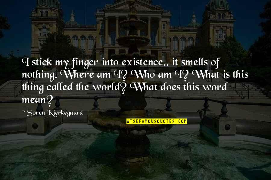 I Am Nothing Quotes By Soren Kierkegaard: I stick my finger into existence.. it smells