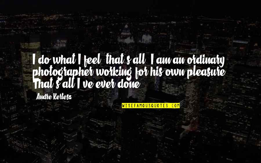 I Am Ordinary Quotes By Andre Kertesz: I do what I feel, that's all. I
