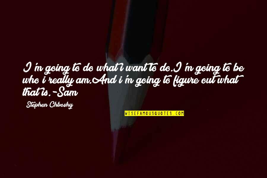I Am Sam Quotes By Stephen Chbosky: I'm going to do what i want to